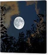 Moon Glo Canvas Print