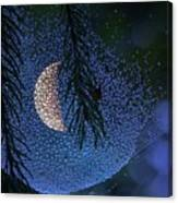 Moon In A Web Canvas Print