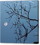 Moon Reflection Canvas Print