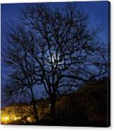 Moon Rise Behind Tree Silhouette At Night Canvas Print