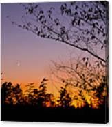 Moon Rising Canvas Print