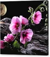Moon Scape Canvas Print