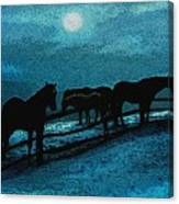 Moonbeam Canvas Print