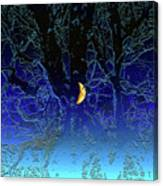 Moondance Canvas Print