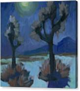 Moonlight And Joshua Tree Canvas Print