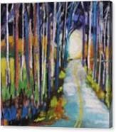 Moonlight Glimpse Canvas Print