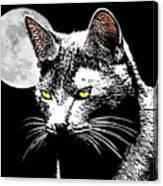 Moonlight Grays Canvas Print