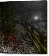 Moonlight On The River Bank Canvas Print