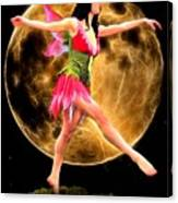 Moonlight Stroll Of A Fairy Canvas Print