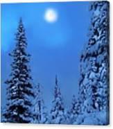 Moonlight  Through The Twilight Haze Canvas Print