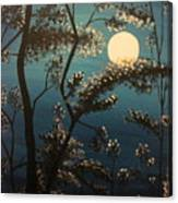 Moonlit Trees Canvas Print