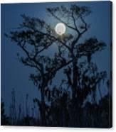 Moonrise Over Wetlands Canvas Print
