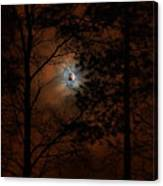 Moonshine 04 Bad Moon Rising Canvas Print