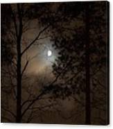 Moonshine 05 Canvas Print