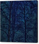 Moonshine 12 Blue Sky Canvas Print