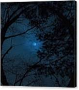 Moonshine 16 The Trees Canvas Print