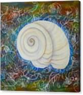 Moonsnail Lace Canvas Print