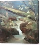 Moore Ck, Asheville, Nc Canvas Print