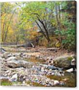 Moore's Creek Canvas Print