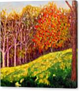 Mooresville October Canvas Print