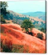 Moorland Hillside  Canvas Print