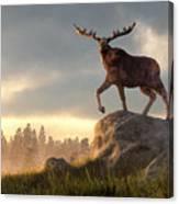 Moose At Dawn Canvas Print