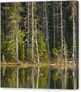 Moose Creek Reservoir Canvas Print