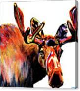 Moose In Orange Canvas Print