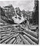 Moraine Lake Driftwood No 1 Canvas Print