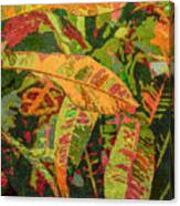 More Fern Abstraction Canvas Print