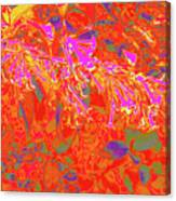 More Night Bloomers 8 Canvas Print