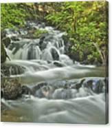 Morgan Falls 4584 Canvas Print