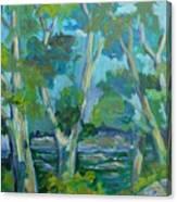 Moria River At Belleville Canvas Print