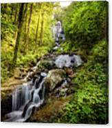 Morning At Amicalola Falls Canvas Print