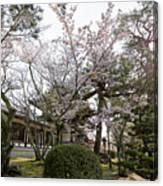 Morning At Horyu-ji Temple Canvas Print