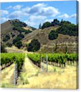 Morning At Mosby Vineyards Canvas Print