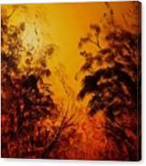 Morning Canopy Canvas Print