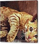 Morning Cat Canvas Print