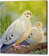 Morning Doves Canvas Print