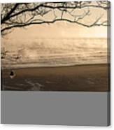 Morning Filey Beach Canvas Print