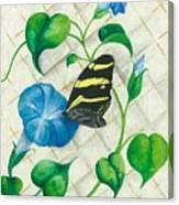 Morning Glories And Butterfly Canvas Print