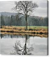 Morning Haze And Reflections Canvas Print