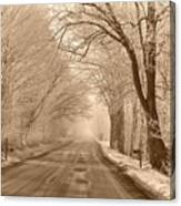 Morning Ice And Fog Canvas Print