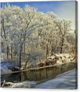 Morning Icing Along The Creek Canvas Print