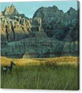 Morning In The Badlands Canvas Print