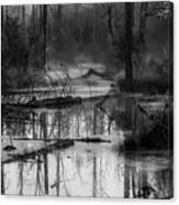 Morning In The Swamp Canvas Print