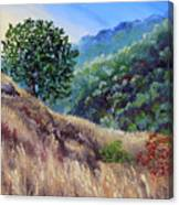 Morning On A Hilltop Canvas Print