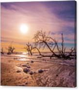 Morning On Boneyard Beach Canvas Print