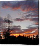 Morning Silhouetted - 1 Canvas Print