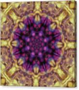 10301 Morning Sky Kaleidoscope 01b Canvas Print